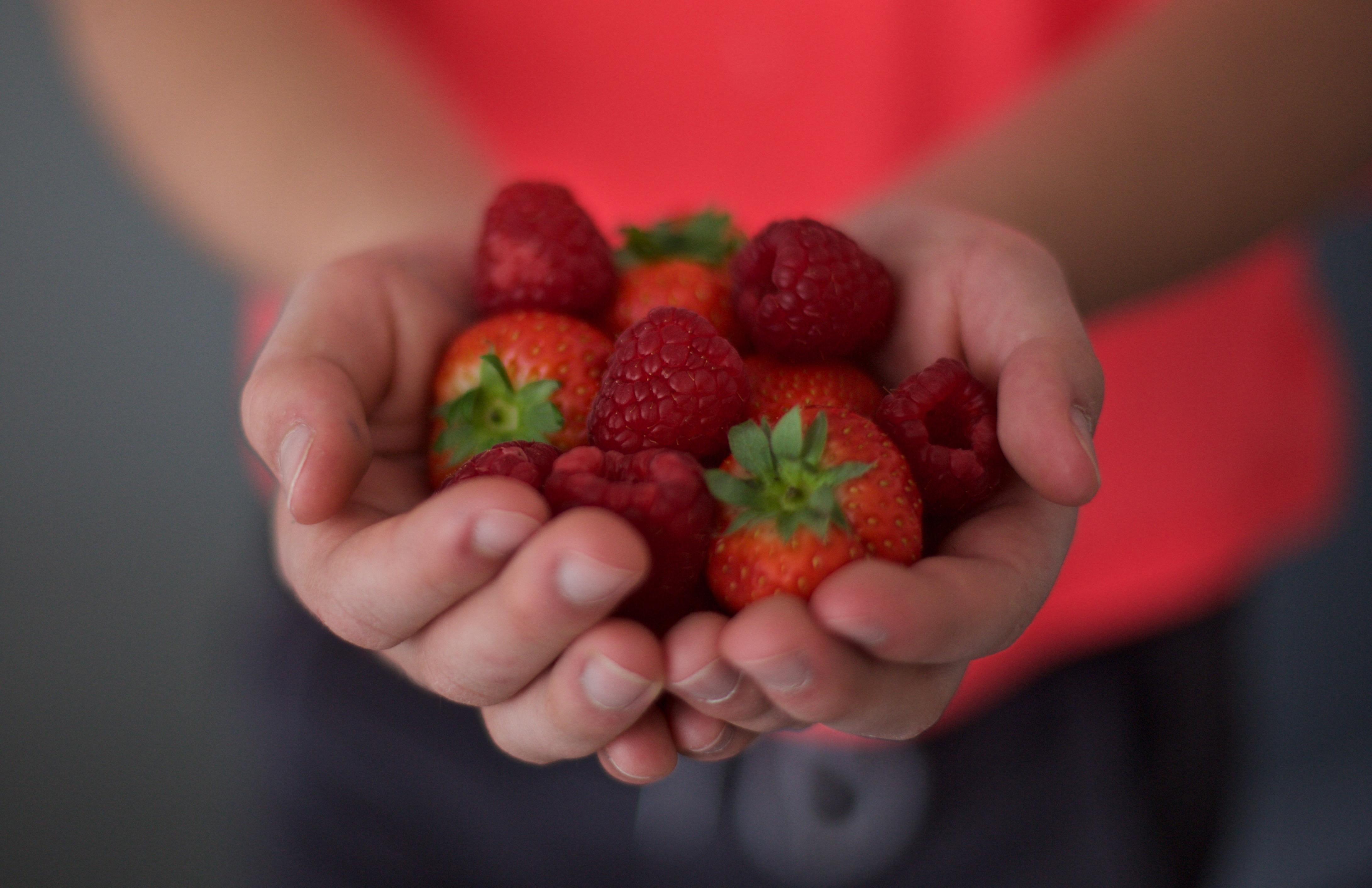 Voedingsadviesbureau – Judith Rondeel